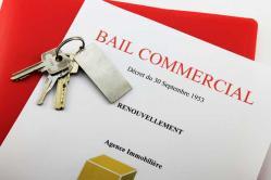 avocat droit commercial Pau